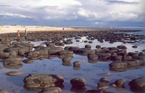 stromatolithes.jpg