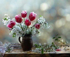 bientot le printemps